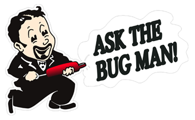 Ask the Bug Man! logo - contact for pest control Eugene