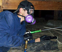 image of Ask the Bug Man Pest Management Company employee wearing special mask and gloves while working
