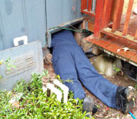image of Ask the Bug Man Pest Management Company employee halfway under a crawl space